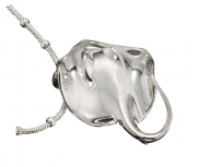 Sterling Silver Ray Pendant and Chain